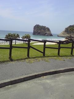 沖縄→種子島